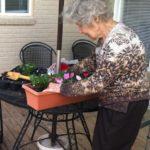 LV gardening
